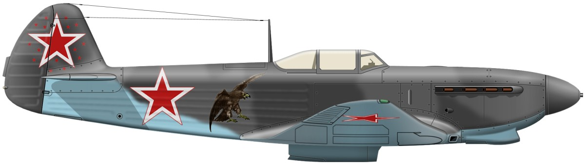 russian nose art eagle side profile.